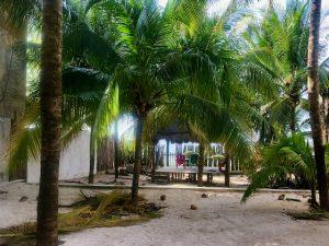 Yucatán Beach Yard with Palapa