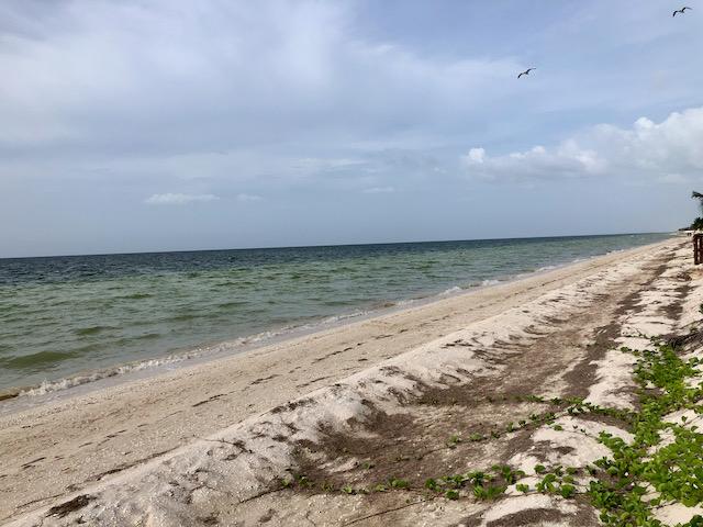 Yucatán Beach